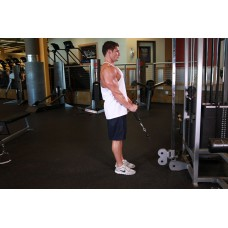 Cable Hammer Curls - Rope Attachment