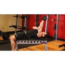 One Arm Pronated Dumbbell Triceps Extension