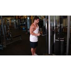 Triceps Pushdown - V-Bar Attachment